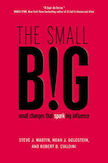 The small BIG:
